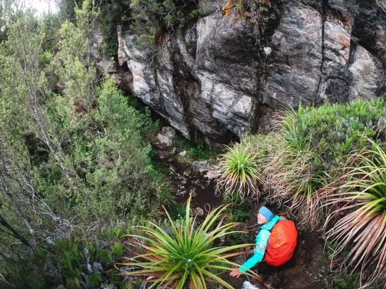 CLIMBING MOSS RIDGE TASMANIA