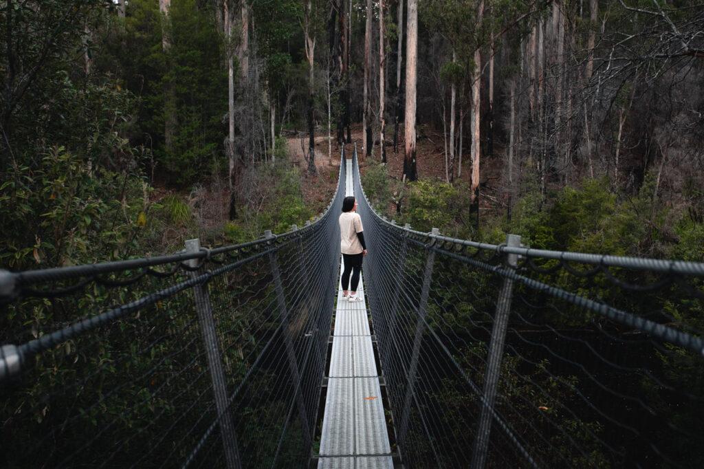 SWINGING BRIDGES WALK TAHUNE