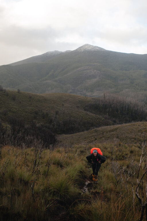 HIKING IN TASMANIA'S BACK COUNTRY