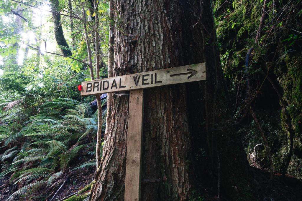 BRIDAL VEIL FALLS HIKE TASMANIA