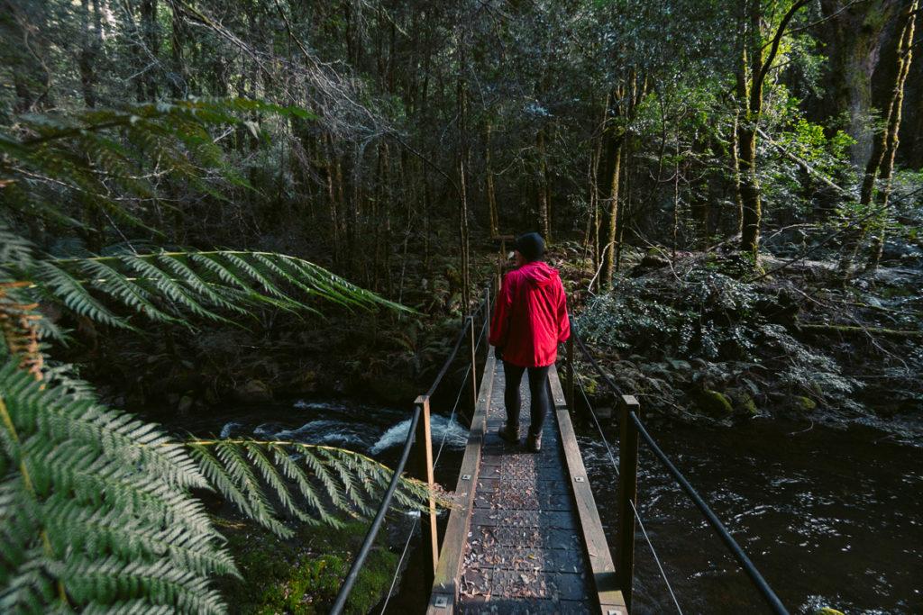 BRIDAL VEIL FALLS WALK TASMANIA