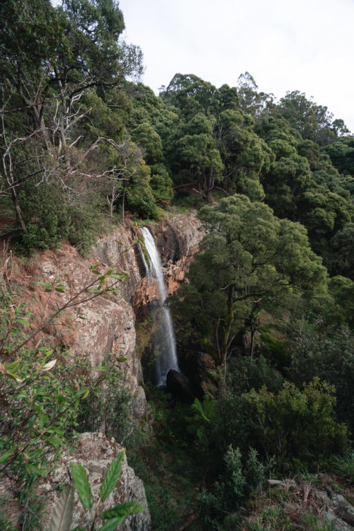 UPPER PRESTON FALLS TASMANIA