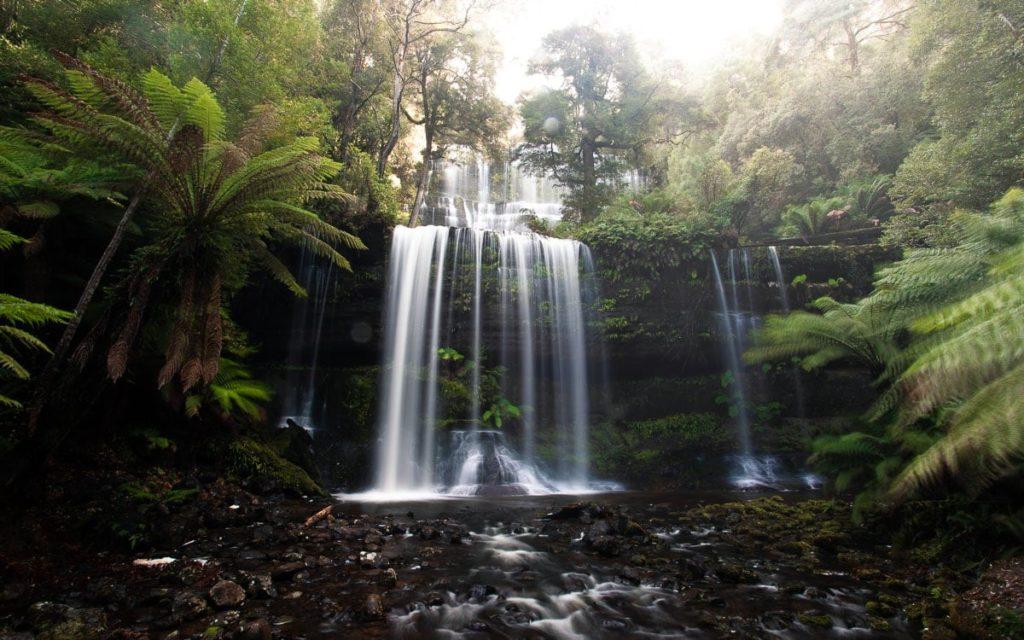 WATERFALLS IN TASMANIA