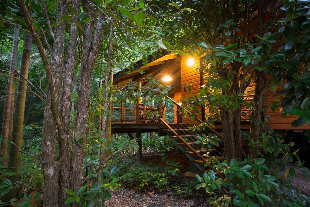 Wildwood Cape Tribulation Accommodation