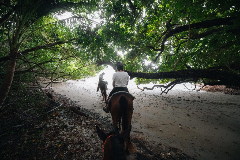 BEACH HORSE RIDE AT CAPE TRIBULATION