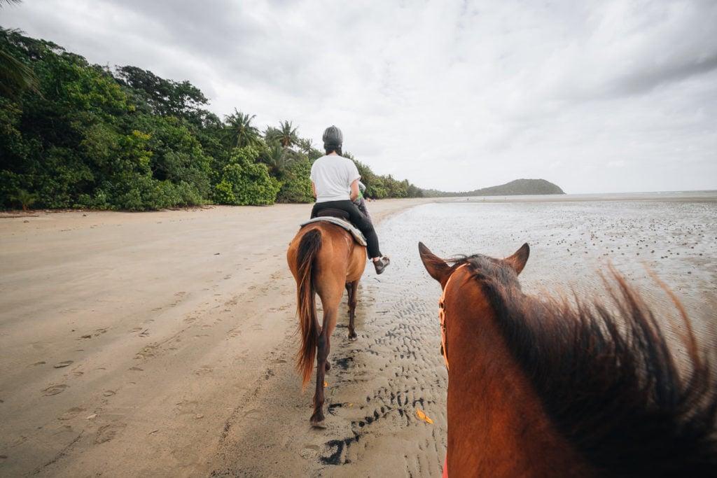 MYALL BEACH HORSE RIDING