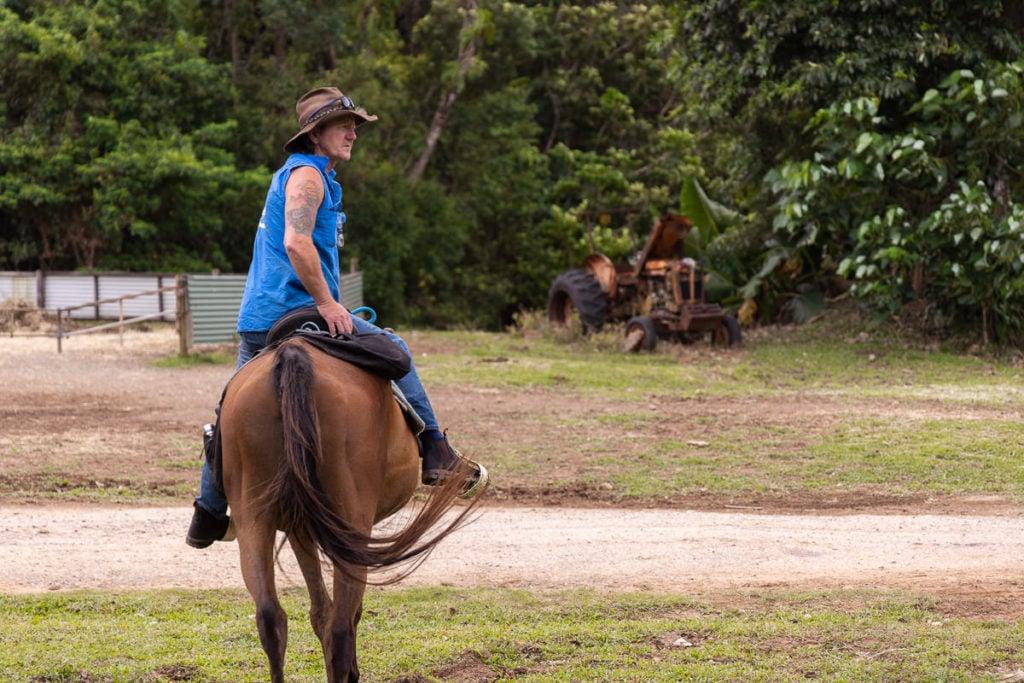 HORSE RIDING TOUR IN CAPE TRIBULATION