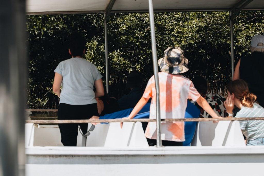 DAINTREE CROCODILE TOUR, RIVER BOAT WITH SOLAR WHISPER