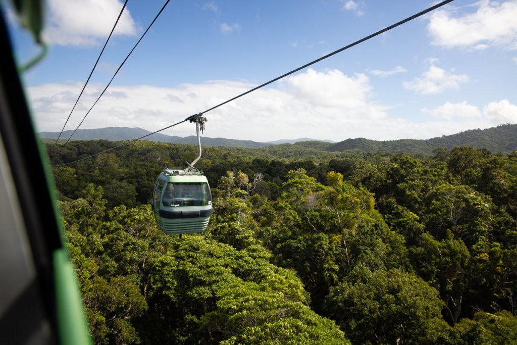 SKYRAIL RAINFOREST CABLEWAY EXPERIENCE FROM CAIRNS