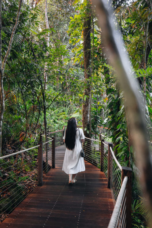 RED PEAK RAINFOREST DISCOVERY CENTRE GUIDE