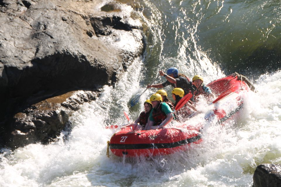 cairns tours and activities